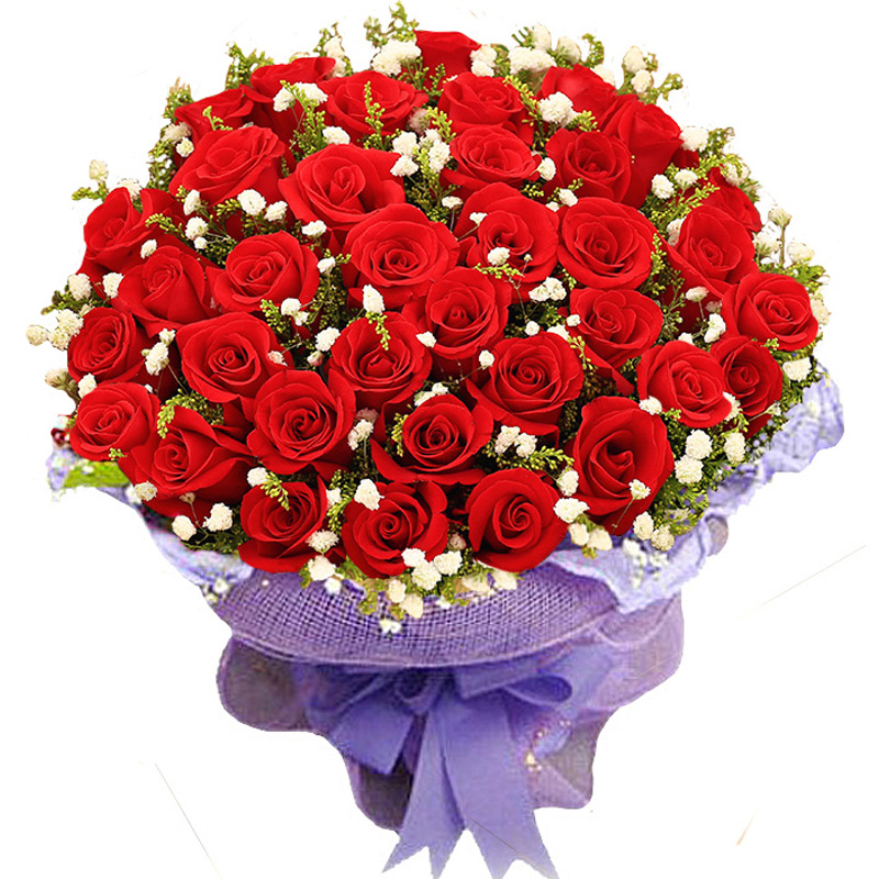 send 33 red roses to