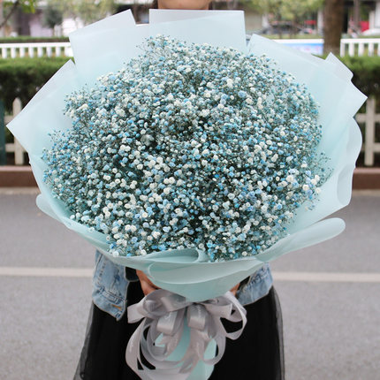 send blue baby breath to shanghai