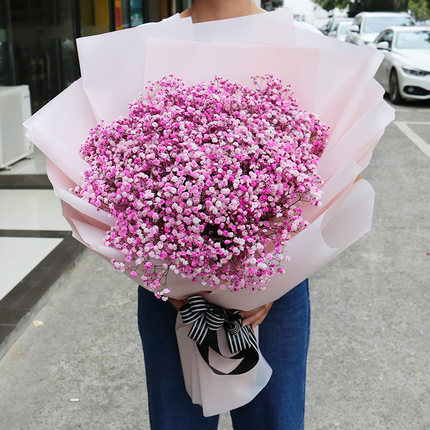 send pink baby breath to shanghai