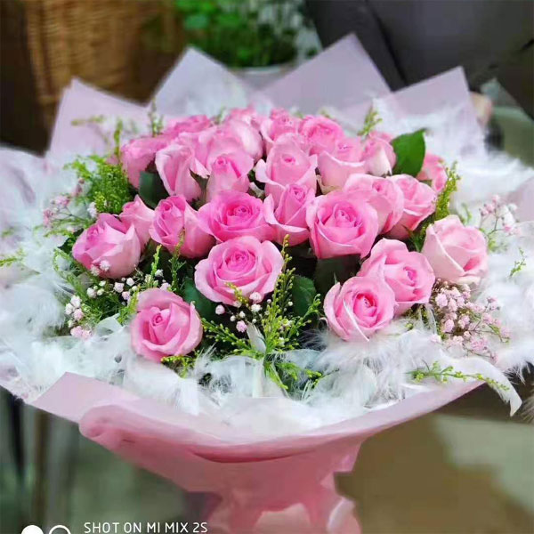 send 24 pink roses to shanghai