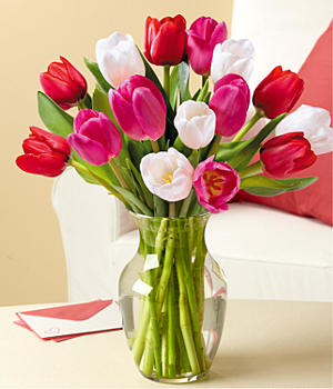 send 15 Sweetheart Tulips to china
