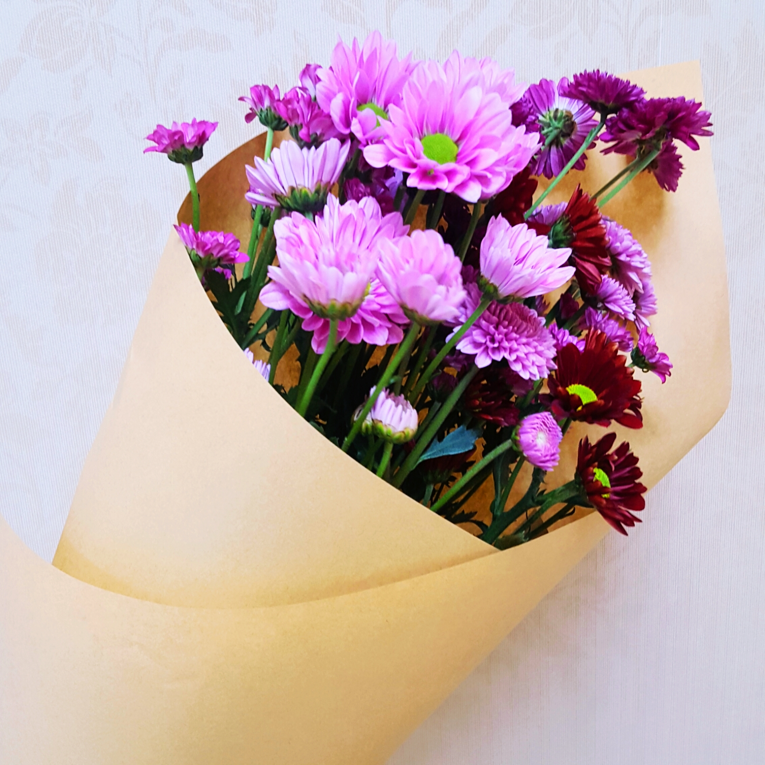 send purple daisy to suzhou