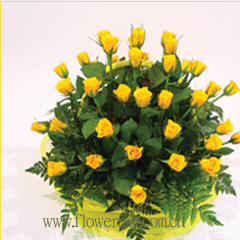 send 33 yellow roses to