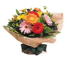 send gerberas bouquet to