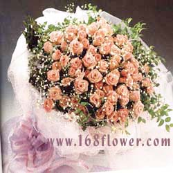 send 100 pink roses to
